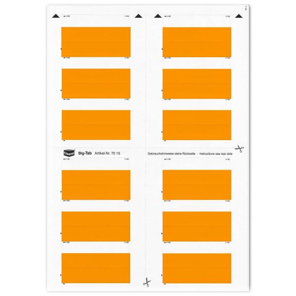 701504 Big-Tabs orange