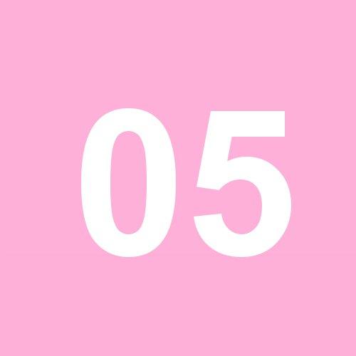 05 - rosa
