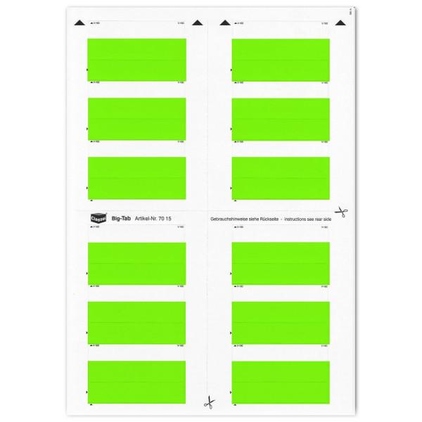 701506 Big-Tabs grün