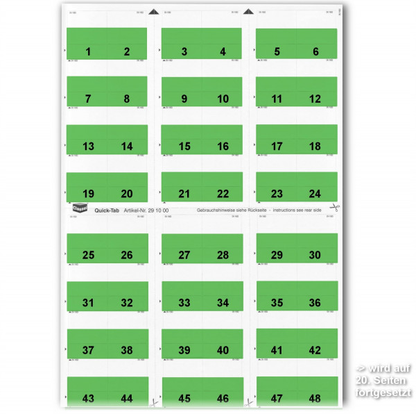 291016N Daten-Tabs mit Nr.-Druck 1-999/Serie=21Bla