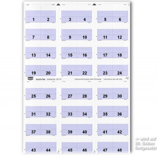 291012N Daten-Tabs mit Nr.-Druck 1-999/Serie=21Bla