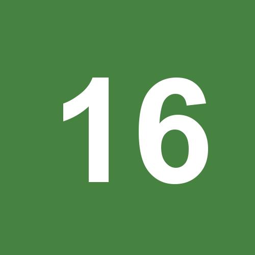 16 - dunkelgrün